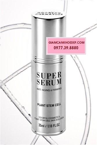 Tế bào gốc thực vật super serum plant stem cell